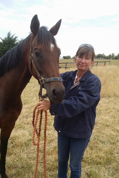 Bowen Therapy for horses